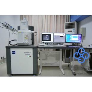 热场发射高分辨扫描电镜(SEM)