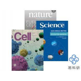 科技论文绘图 学术杂志封面设计 配图设计